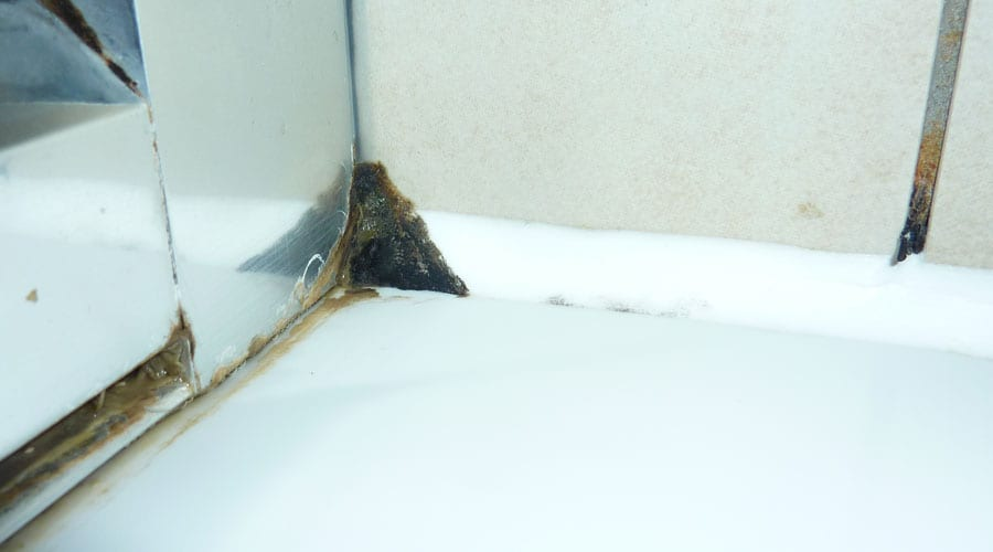 Tips And Advice For Making Your Bathroom A Mould Free Zone